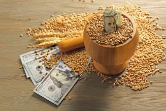 Экспорт продукции АПК из Воронежской области с начала года составил 169,7 млн долл. США