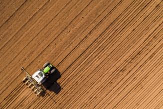 В Новгородской области план ярового сева выполнен на 46,2%