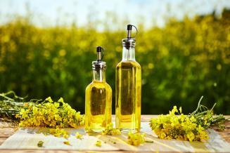 Правительство выделило 3,75 млрд руб. на поддержку производителей масличных культур