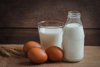 Вологодская область — вторая в СЗФО по объемам реализации яиц и молока сельхозорганизациями