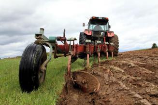 До 2025 года в России планируется ввести в оборот 4 млн га неиспользуемой пашни