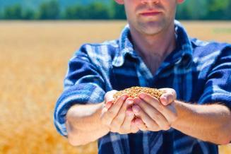 В Госдуме подготовлен третий пакет мер поддержки аграриев