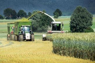 В сельскохозяйственных организациях Кировской области стартовала кормозаготовка