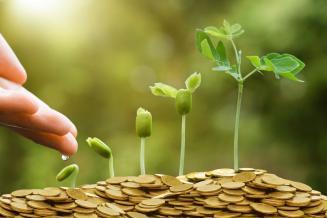 Финансирование госпрограммы развития АПК РФ в 2019 году составило 311,5 млрд руб.