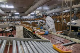 В Ростовской области планируется возобновить производство мяса утки