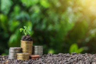 На развитие малых форм хозяйствования в Северной Осетии в 2020 году предусмотрено 126,9 млн рублей