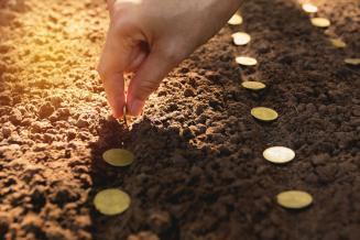 Красноярский край лидирует в СФО по объему перечисленных аграриям субсидий из региональной казны