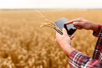 В Томской области повысят качество консультаций, оказываемых аграриям