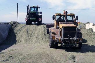Кузбасские аграрии приступили к кормозаготовке