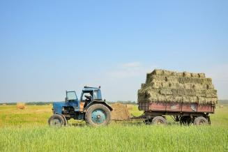 В Республике Саха (Якутия) началась кормозаготовительная кампания