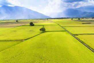 В Тверской области выделяют 50млнруб. на увеличение производства озимых зерновых