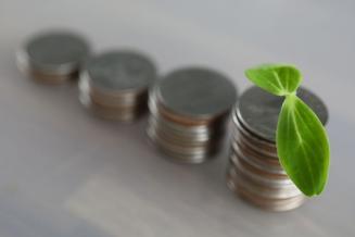 Разделение субсидий на стимулирующую и компенсирующую части доказало свою эффективность