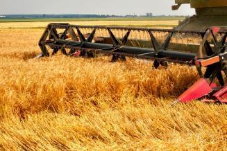 В Адыгее идет уборка зерновых и зернобобовых культур