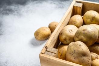 К 2025 году самообеспеченность Амурской области товарным картофелем достигнет 57%