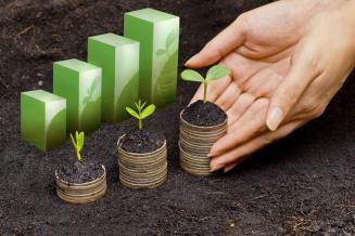 Среднемесячная заработная плата в АПК Свердловской области в 2019 году составила 29 967 руб.
