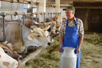 В Приморском крае планируют увеличить производство молока в 1,5 раза
