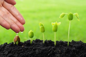 В Рязанской области до аграриев доведено 619,6 млн руб. федеральных средств господдержки