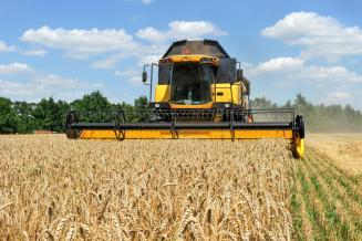 На Ставрополье уборка зерновых преодолела экватор
