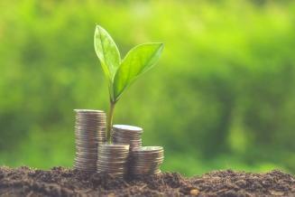 Мурманские аграрии получили из федерального бюджета 20,7 млн руб. господдержки