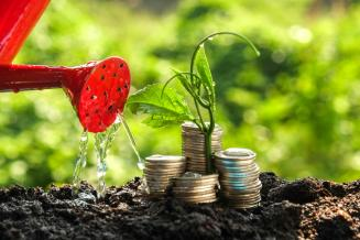 Самарским аграриям в виде господдержки перечислено более 1 млрд руб.