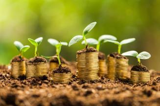 В Пензенской области аграрии получили из федерального бюджета 430,1 млн руб. господдержки