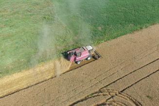 В Чеченской Республике планируют собрать рекордный урожай зерновых