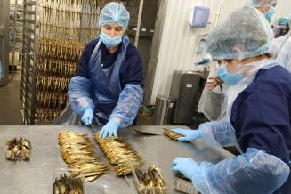 Ленинградская область — в лидерах рыбной отрасли