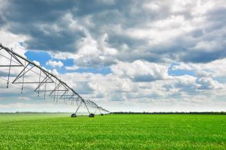 Минсельхоз разработал госпрограмму вовлечения в оборот сельхозземель