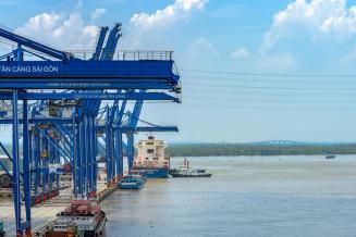Импорт продукции АПК в Ярославскую область за 2014-2019 годы сократился почти втрое