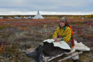 11 млн руб. направят в Якутии на поддержку оленеводов для покупки или строительства жилья
