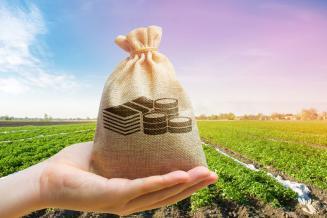 Аграриям Волгоградской области перечислено более 1,8 млрд руб. федеральных средств господдержки