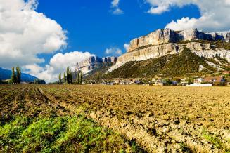 Республика Крым за первое полугодие 2020 года экспортировала сельхозпродукции на 8,9 млн долл. США