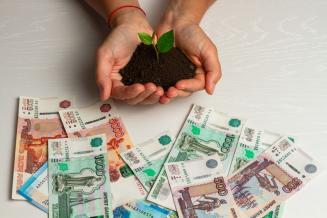 260 млн руб. получила Республика Марий Эл на стимулирование сельхозпроизводства в 2020 году