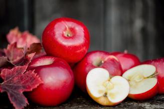 Производство плодов и ягод в России в 2020 году составит около 900 тыс. т