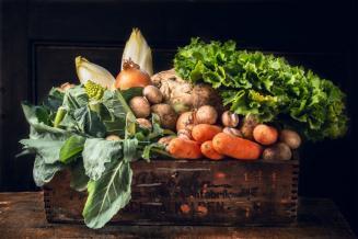 В Астраханской области дешевеют овощи