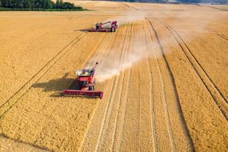 ВСеверной Осетии практически завершена уборка озимых зерновых