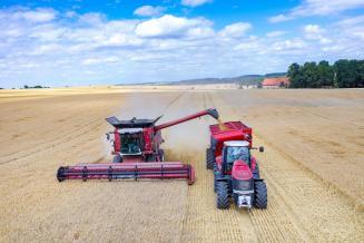 В Свердловской области темпы уборки и урожайность превышают показатели прошлого года