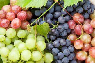 Доля качественного российского вина ежегодно увеличивается в пределах 4,5%