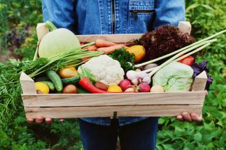 Число производителей органической продукции в РФ за 7 месяцев выросло на 10 компаний