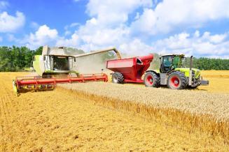 В Томской области убрано более половины посевов зерновых культур