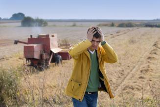 Изменения в законе об агростраховании сделают его доступнее для малых сельхозпредприятий