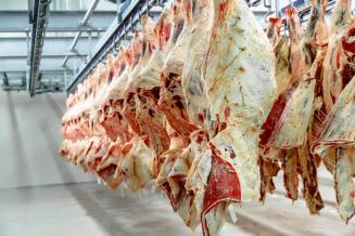 В Пензенской области увеличилось производство продукции животноводства