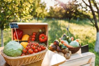 Договор о создании единого рынка органической сельхозпродукции планируют заключить в ЕАЭС