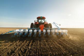 В США начался сев озимой пшеницы