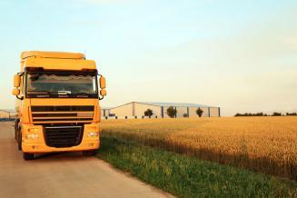 Омская область увеличила объем экспорта продовольствия и сельскохозяйственного сырья на 11,2%