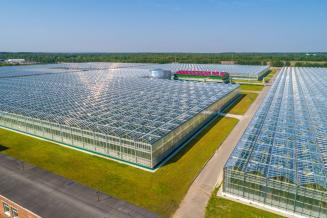 В Чувашии завершается строительство крупного тепличного комплекса «Новочебоксарский»