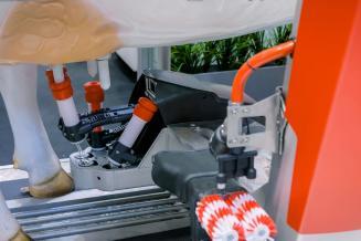Более 500 млн руб. на проектирование роботизированной фермы в Ведлозере