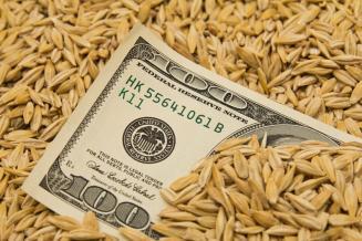 Россия в августе сократила импорт продовольствия из стран дальнего зарубежья