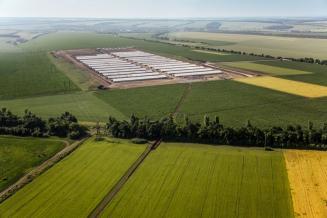 С 2022 года Минсельхоз будет заменять «капексы» льготным кредитованием аграриев