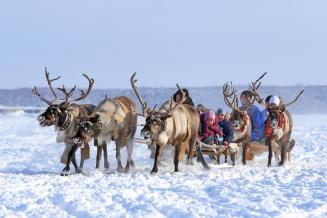 79,9 млн рублей получит Ненецкий АО  в 2021 году на развитие сельских территорий